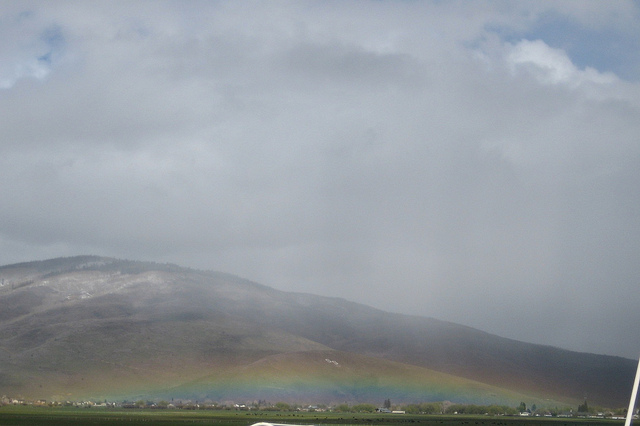 Rainbowontheground