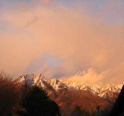 Mountaingolden