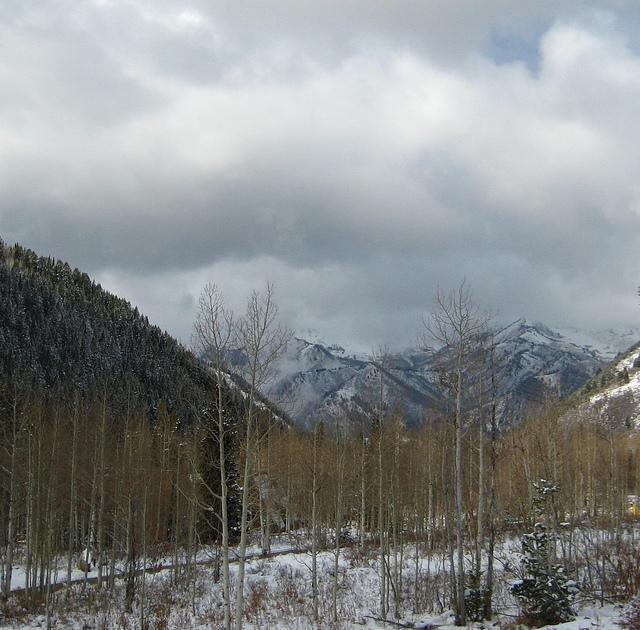 Mountainsaregray