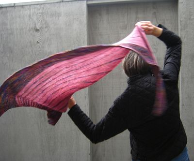 Flyingbyshawl