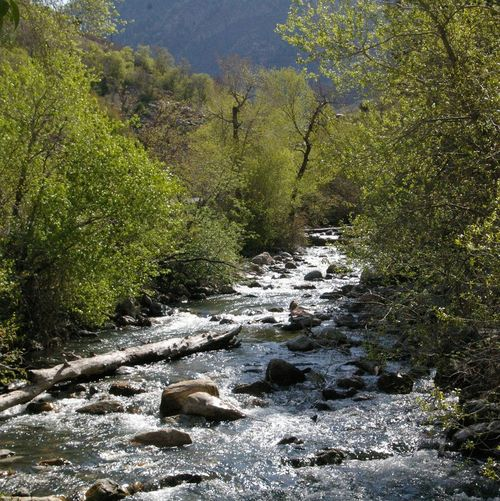 Mountainstreamsnotrunning