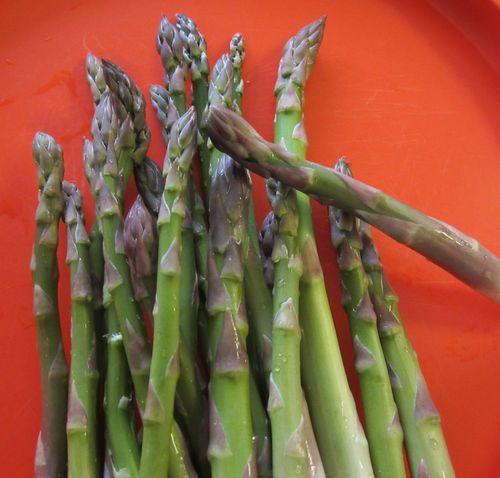 Asparagusfreshfromgarden