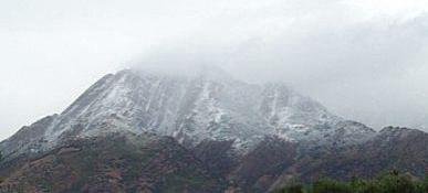 Snowtop2