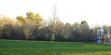 Urbanparkplaygroundandsmallforest