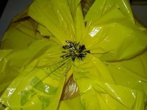 Flowerontopofwrapping