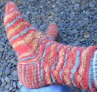 Crazymonkeysockinredrockcanyon