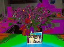 Myflowersinpsycedeliccolors