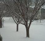 Snowcoldiceyday_1